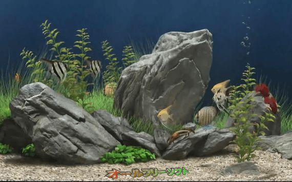 3D Aquarium Screensaver 1.0   3D Aquarium Screensaver--スクリーンセーバー--オールフリーソフト