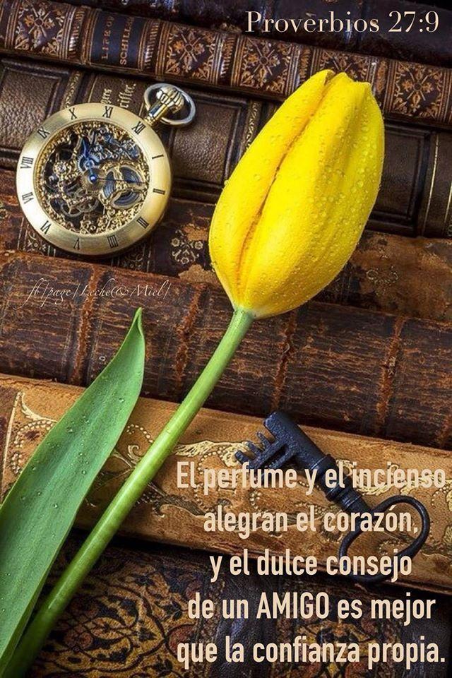 << El perfume y el incienso alegran el corazón, y el dulce consejo de un amigo es mejor que la confianza propia >> Proverbios 27:9