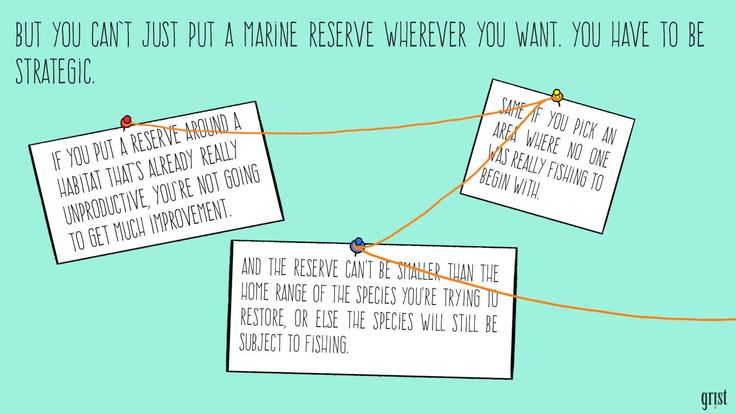 This illustrated guide makes marine protected areasfascinating   Grist