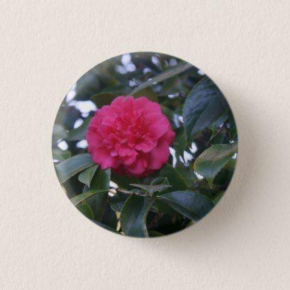 Daikagura Red Camellia Pinback Button - flowers floral flower design unique style