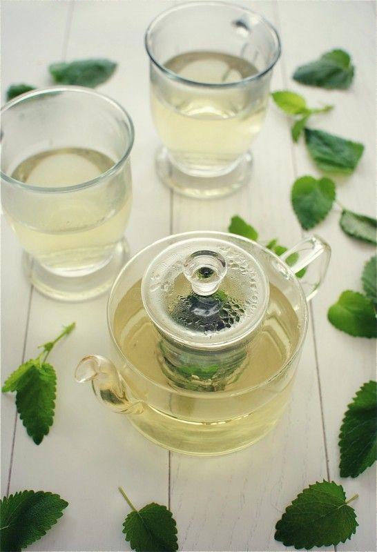 homemade lemon balm tea...and a pretty sweet blog to stumble upon :)