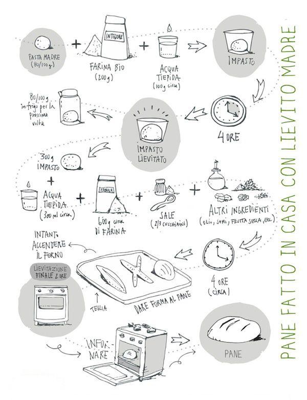 Come fare la pasta madre, infografica