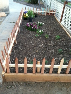 Short Picket Fence Using Stakes Would Fill In More For The Garden