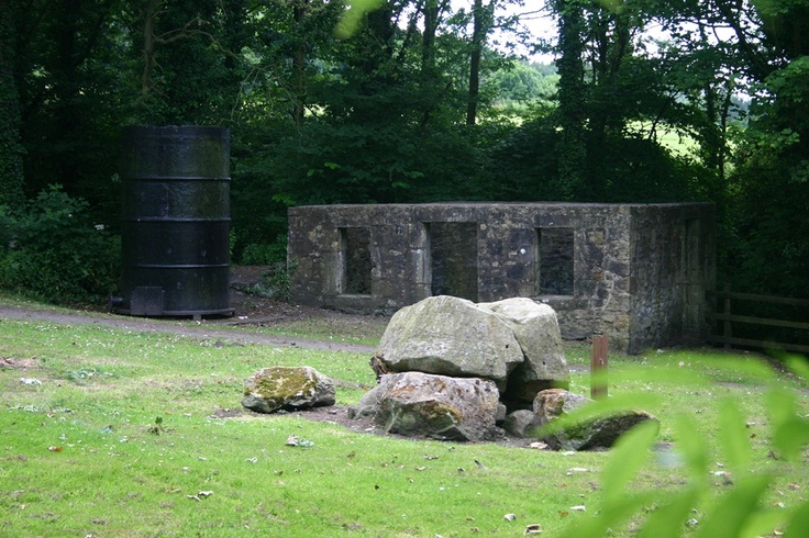 another view of James Watt workshop, his boiler and the perferated tree in the foreground at-kinneil.jpg