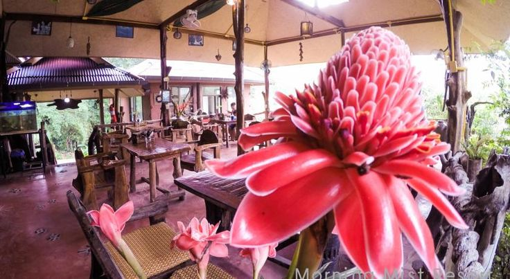 Resort Khao Sok Morning Mist, Thailand - Booking.com