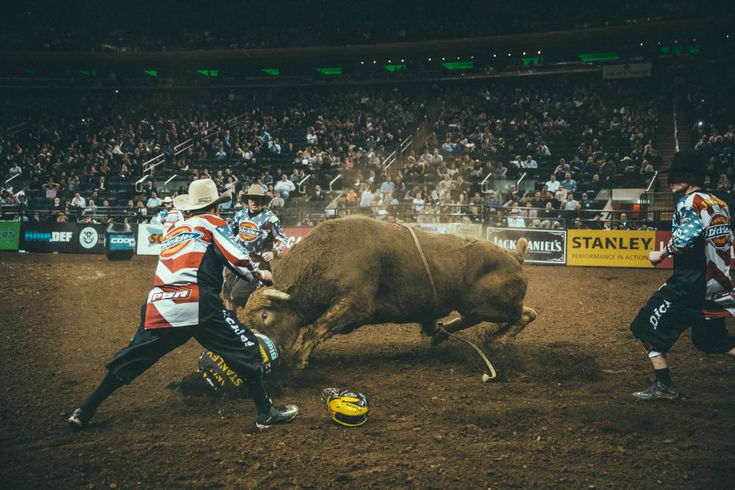 31 best bryan schutmaat images on pinterest mountain fotografia and fotografie for Bull riding madison square garden