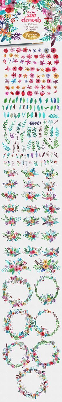 aquarela + flores/folhas