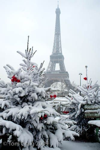 I moved to Paris a few days before Christmas in 1999.  It didn't snow but there was a terrible wind storm that knocked trees over.  This photo reminds me of my first winter in Paris - wonderful.