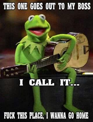 Oh Kermit....
