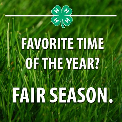4 H Quotes Simple 105 Best 4H Images On Pinterest  4 H Country Life And Country