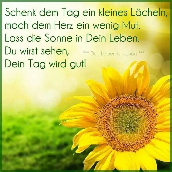 guten morgen - http://guten-morgen-bilder.de/bilder/guten-morgen-533/