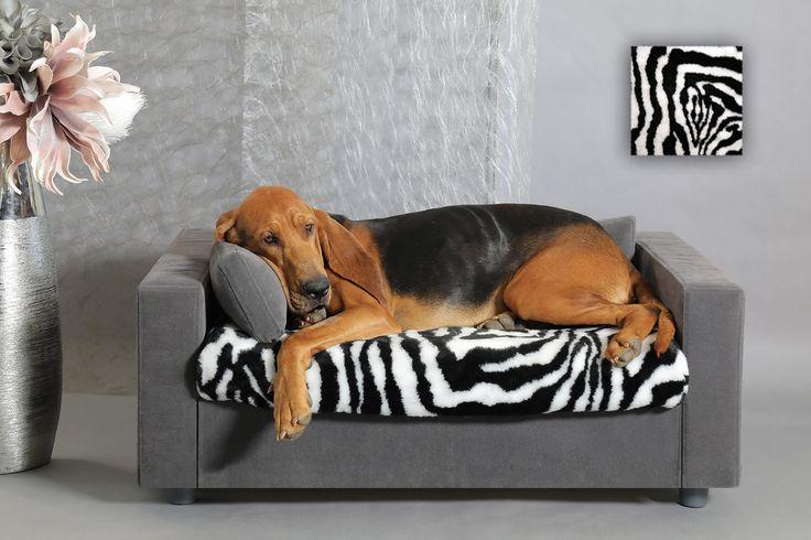 Canapés design pour chien et chat. Confort optimal pour vos compagnons. Tendance déco. #canapepourchat #canapepourchien #chat #chien #meublepouranimaux #meublepourchat #meublepourchien #litpourchat #litpourchien #dogbed #catbed