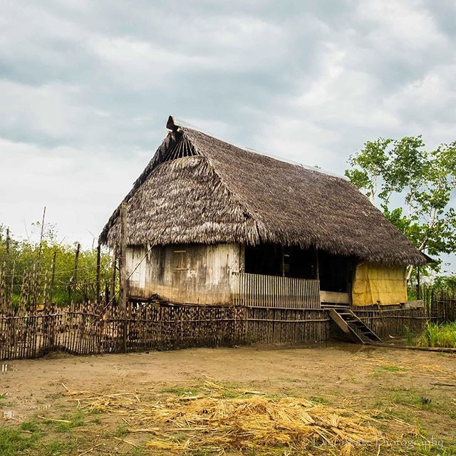 House in The old village of Puerto Miguel, in the #peruvianamazon. Every few years the village is rebuilt as the Amazon River takes over their land. #exploreperu #vistatravels