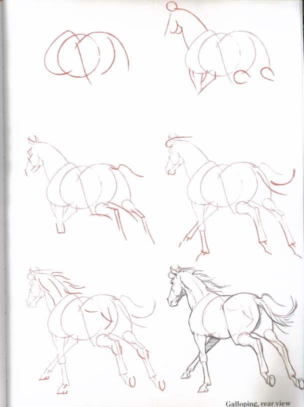 how to draw a simple cartoon horse
