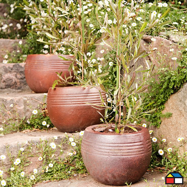 Maceteros colección Black Soil #terraza #jardin