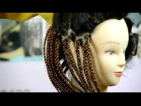 FEATHERS-PIXIE BOB - YouTube