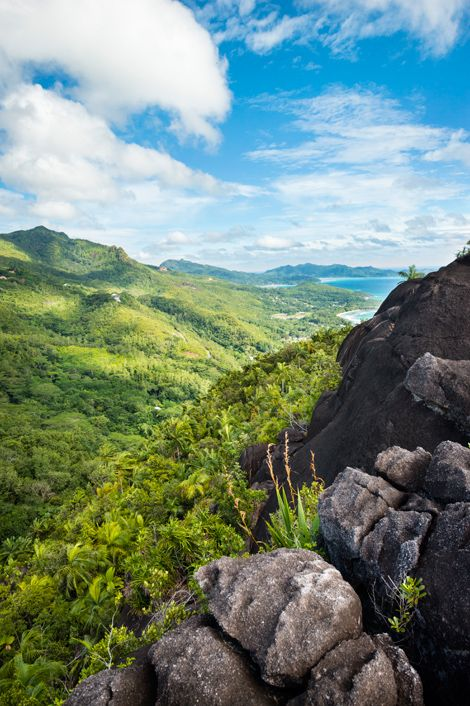 The Morne Seychellois National Park covers more than a fifth of Mahé island. Photo by Justin Foulkes