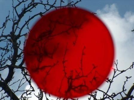 Tabara de grup in Japonia