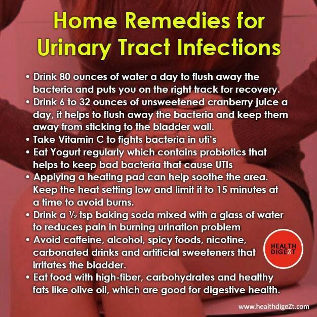 Home Remedy For Dog With Possible Uti