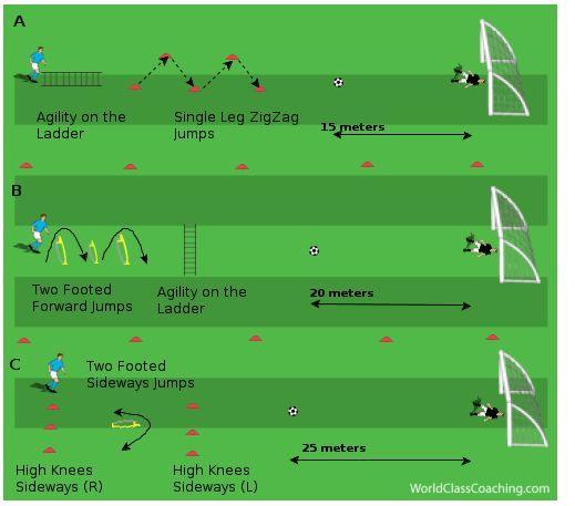 Best 25+ Soccer training program ideas on Pinterest Football - sample soccer team roster template