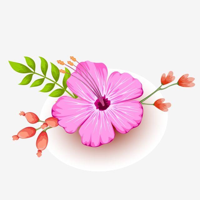 الزهور الوردية زهور الأوراق الخضراء زهور جميلة ربيع صور المتجهات مع المواد Png Beautiful Flowers Pink Flowers Pink
