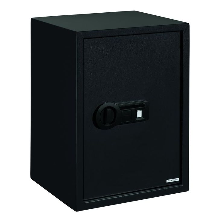 Biometric - Ex-Large Personal Safe with Biometric Lock, 2-Shelves, Black