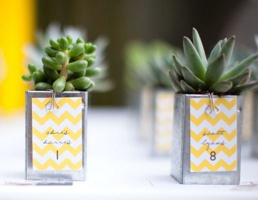 Great idea as place cards OR gifts!