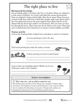 5th grade science worksheets how plants adapt to habitat places to visit science worksheets. Black Bedroom Furniture Sets. Home Design Ideas