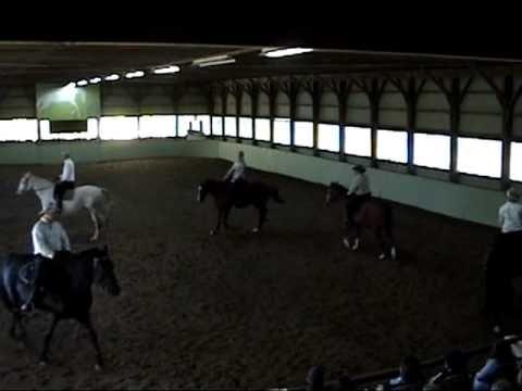 Six horses square dancing, Morley Batt calling the square dance.