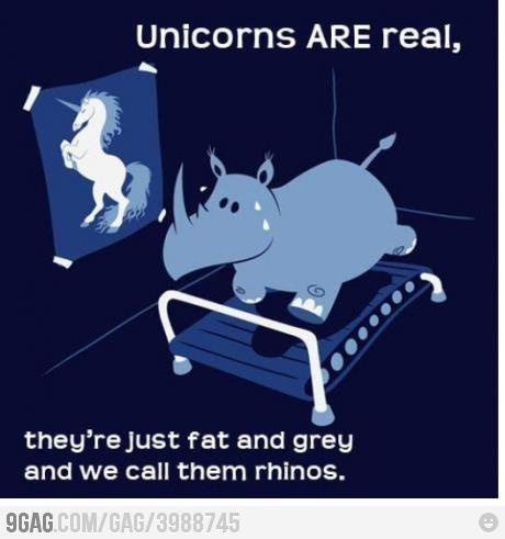 unicorn are real they're just fat grey and we call them ...