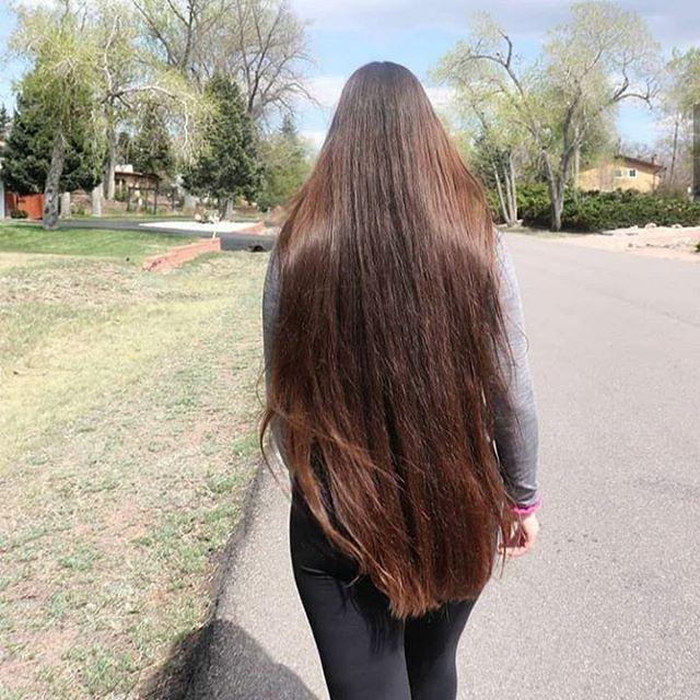 Seus Cabelos Lindo Hoje Cabelossophistique Instagram Photos And Videos In 2020 Beautiful Brown Hair Very Long Hair Super Long Hair