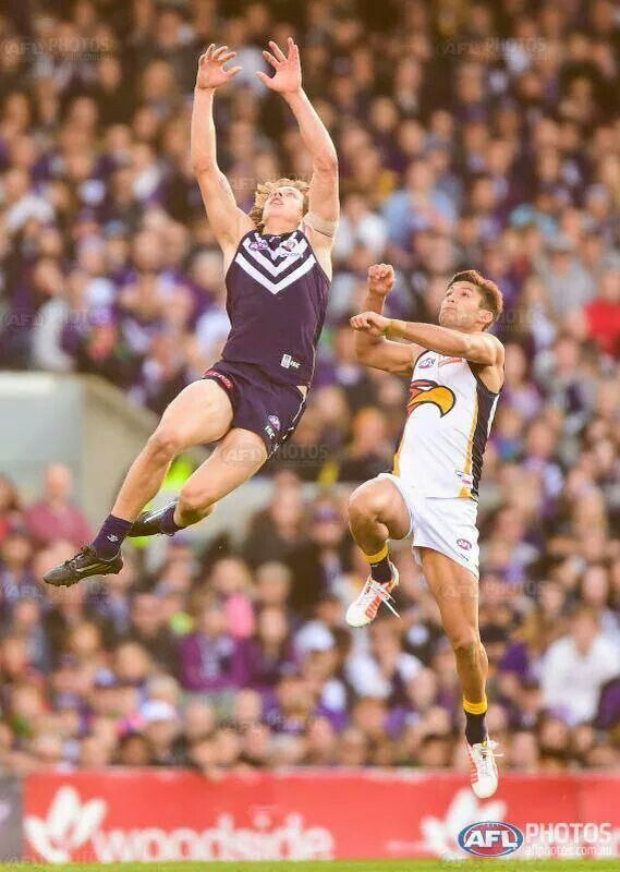 GOTTA LOVE THE DERBY - GO FREO !!!