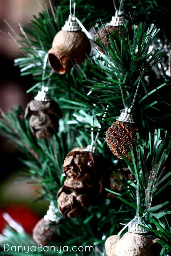 Collect gumnuts and other seedpods to make natural Christmas ornaments.