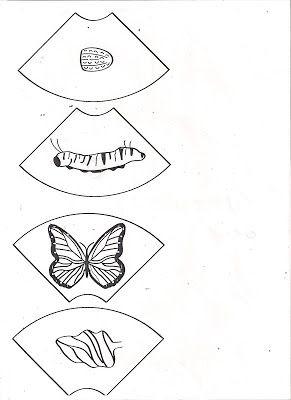 ...Το Νηπιαγωγείο μ' αρέσει πιο πολύ.: Ο κύκλος της ζωής της πεταλούδας