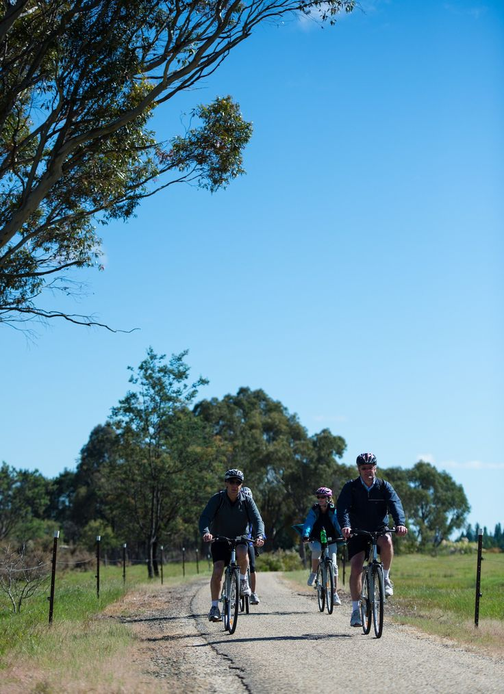 On the Murray to Mountains Rail Trail in North East Victoria, Australia.