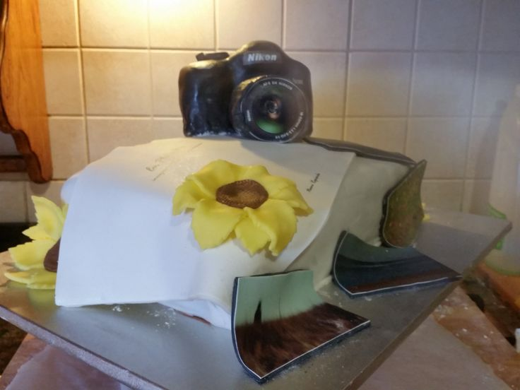 Torta di laurea in fotografia in Pasta di zucchero -pdz! base red velvet