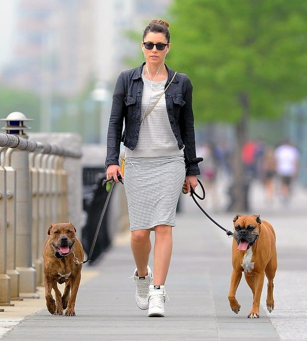 Celebrity Pets - Quotes from Celebrities About Their Pets