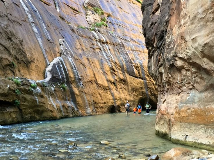One of the most unique hikes in Zion National Park doesn't even have a trail - the Narrows. Hiking the Narrows with kids is an experience not to miss.