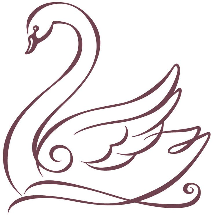 25 Trending Swan Drawing Ideas On Pinterest