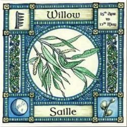 Willow, Ogham name Saille, rules 15th April to 12th May, its element is that of water. In divination: The flexible Willow twig when pushed into damp soil will strike root and grow, so moving on from one period of life to a new era with wisdom and experience gained from adversity.