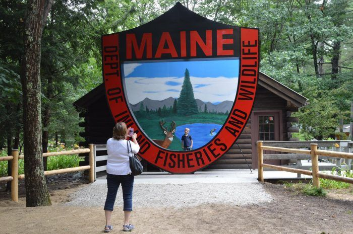 The Maine Wildlife Park in Gray is a wonderful place to spend a day learning about the state's animals.
