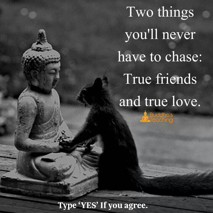 """""""True friends"""". Perhaps someone can give me a definition?"""