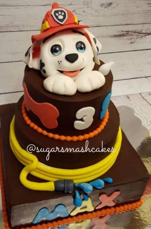 Paw Patrol birthday cake. Marshall cake. :)