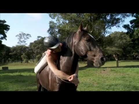 Wind Eaters: A Wild Horse Documentary (Teaser)
