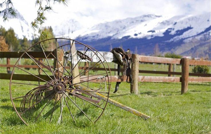 В конюшнях Дарта (Dart Stables), мне повстречалась моя первая настоящая кинозвезда – стареющая гнедая лошадь по кличке Элвис. Она снималась почти во всех батальных сценах трилогии «Властелин колец». Затем Элвис кардинально сменил род занятий и теперь катает любопытных по дремучим лесам вокруг равнины, на которой стоял Изенгард.   Ahipara Luxury Travel New Zealand #новаязеландия #хоббит #туры #гид