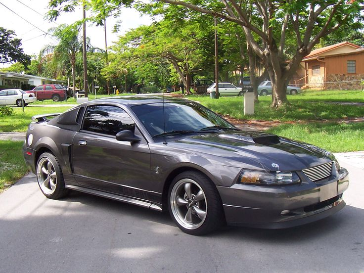 2000 mustangs white | 2003 Mineral Grey Ford Mustang GT Pictures - Miguel Dulanto '03