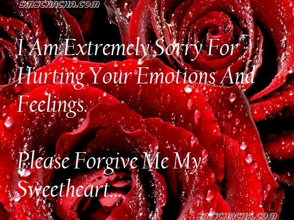 Beautiful Wallpapers With Quotes In Urdu Pin By Eagle Wings On Im Sorry Red Rose Flower Red Rose