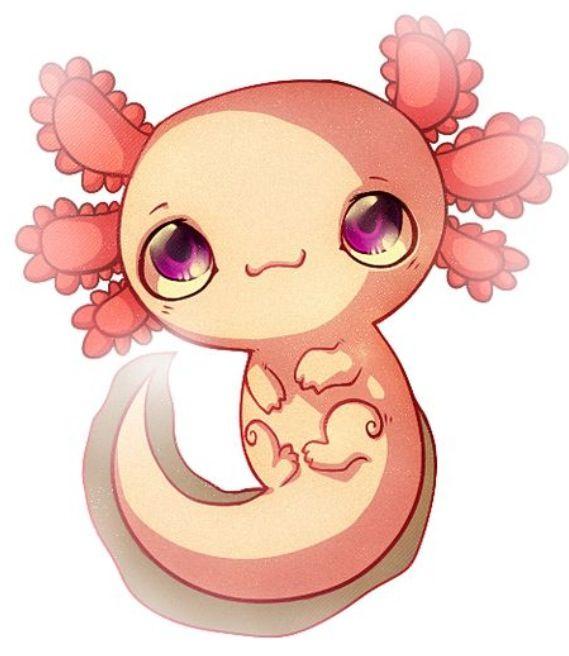 Cute Cartoon Axolotl Pinterest And