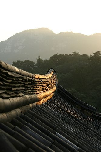 Tiled Roof by candiceecidnac, via Flickr