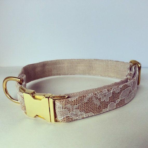 Hey, I found this really awesome Etsy listing at https://www.etsy.com/listing/202336682/dog-collar-wedding-dog-collar-gold-dog